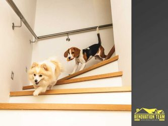 Making Your Home Safer for You and Your Pet
